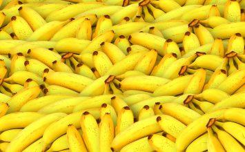Banana fight!